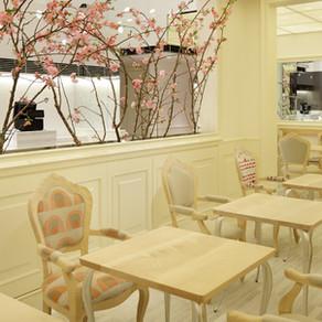교토의 향기를 가득담은 카페, 마루브랑슈 본점(マールブランシュ本店)