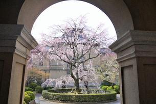 교토부청(京都府庁) 옛 본관