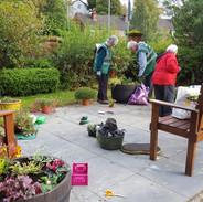 Carers Link Wellbeing Garden.jpg