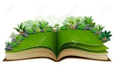 nature book.jpg