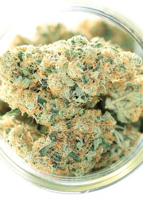 buds in jar.jpg