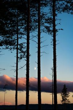 Solnedgång i Björnriket