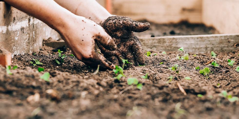 Ecologisch tuinieren - 25/09 & 9/10/2021