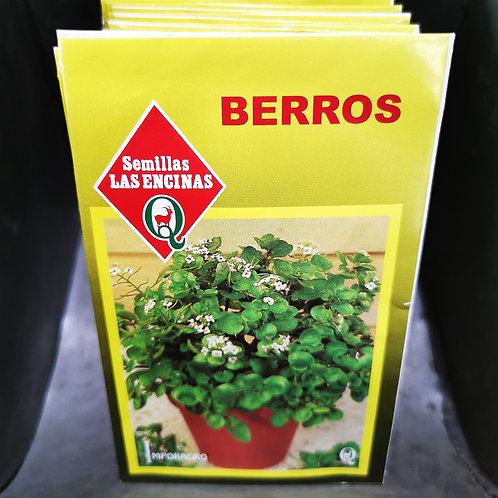 SEMILLAS - BERROS