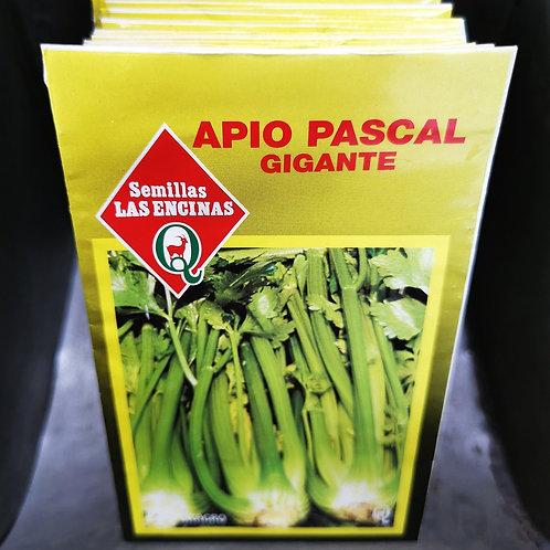 SEMILLAS - APIO PASCAL