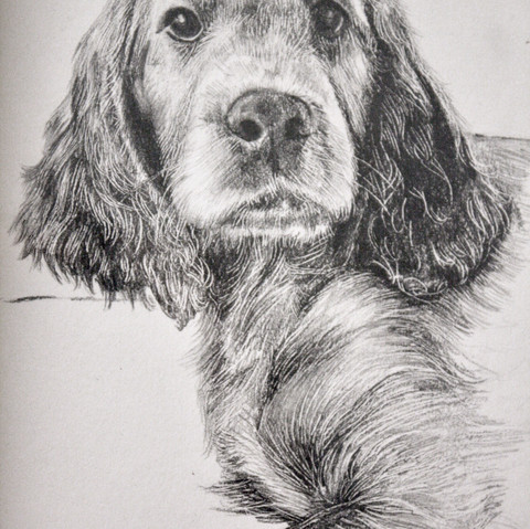 pencil on a5 cartridge paper
