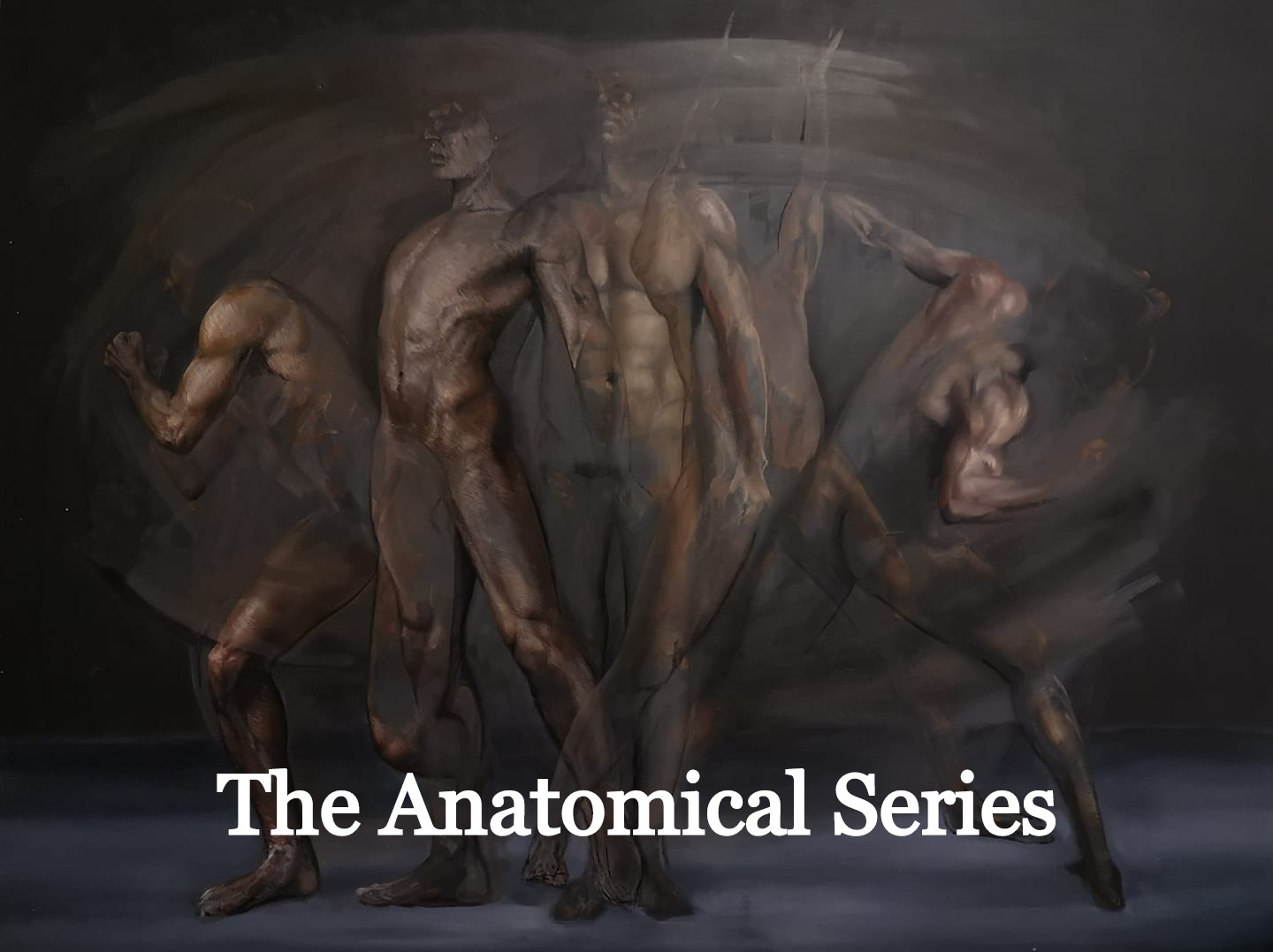 The Anatomical Series