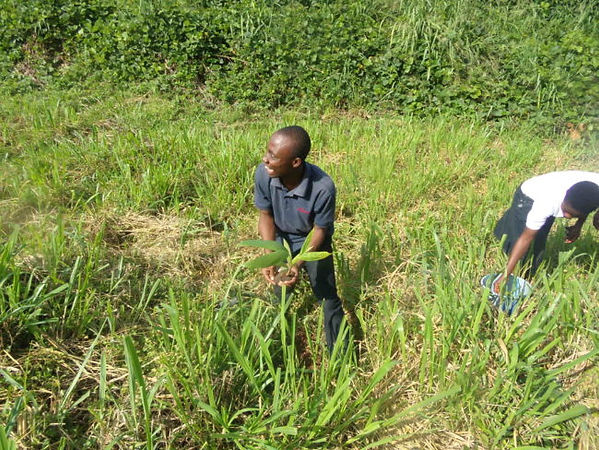KNUST-chapter-planting-trees-along-wewe-