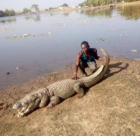 albert-chambichoga-with-nile-crocodile.j