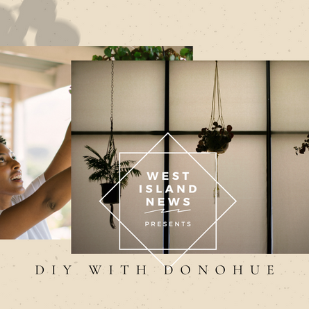 [Video] DIY with Donohue: Macrame Plant Hanger