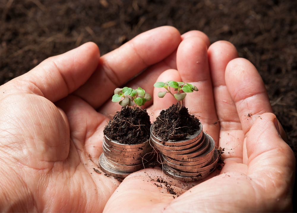 Canada-planting-financial-seeds-quebec-business-funding