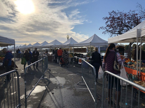 Summer Outdoor Market opening in Ste-Anne-de-Bellevue