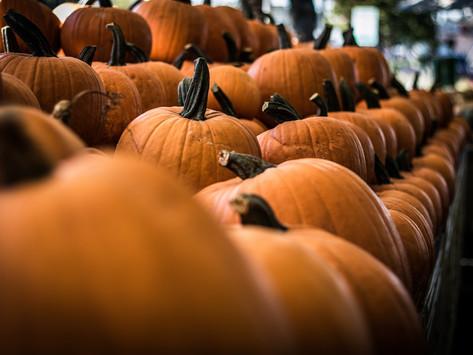 5 Pumpkin Treats for a Tasty Halloween Beyond Pumpkin Pie