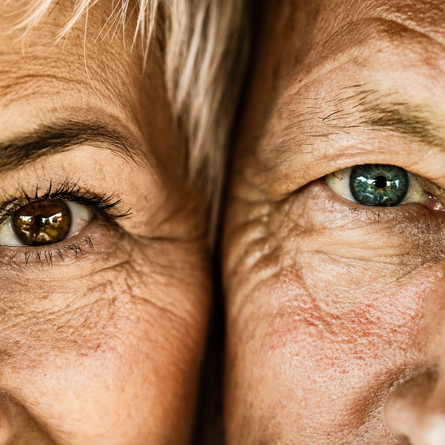Caring and options for seniors - Respite and reassurance for families