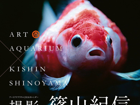 ART AQUARIUM×kishin shinoyama