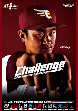 challenge_33