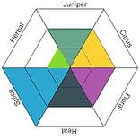 pink robin_flavor diagram.jpg