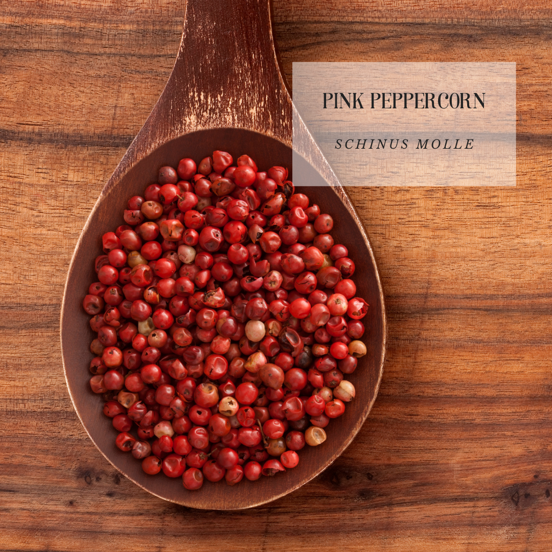 Pink Peppercorn.png