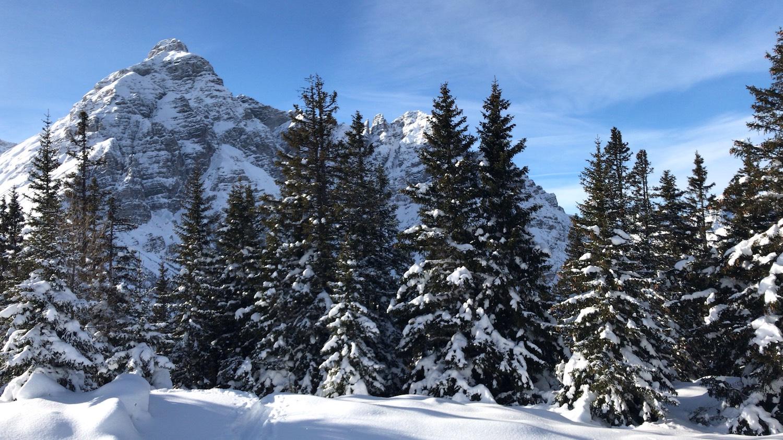 Blick zur Serles, Skitour Waldraster Joechl