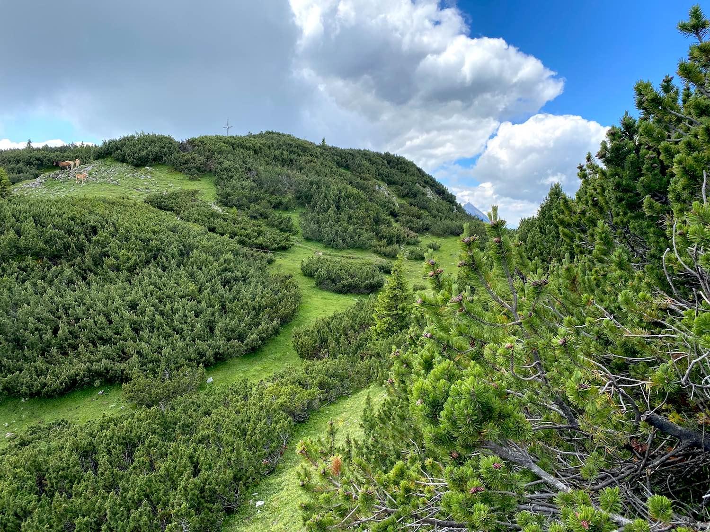 Blick zum Gipfelkreuz, Bike & Hike Simmering, Tirol