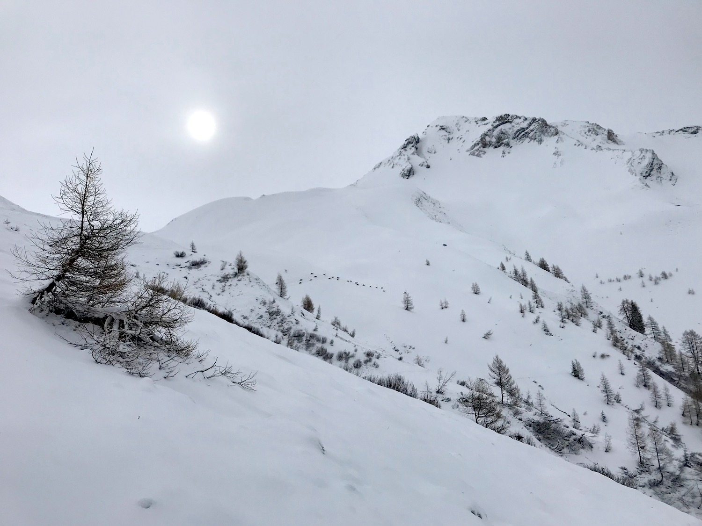 Blick zum Gipfel, Schoeberspitzen Schmirntal Tirol