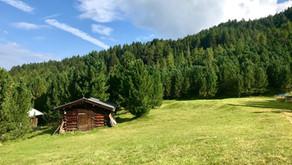 Bendelstein, Wipptal - Bike & Hike - 2.434 m