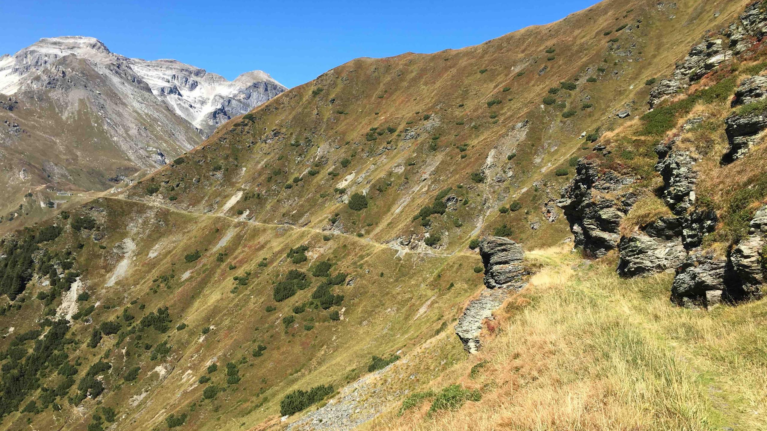 Trailspass im Anschluss der Grenzkammstrasse, Biketour Obernbergtal