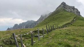 Peilspitze, Gschnitztal - Bike & Hike - 2.392 m