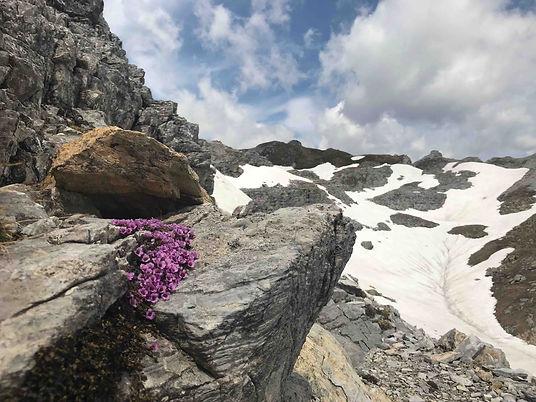 Tribulaun Bergtour, Obernberg Tirol
