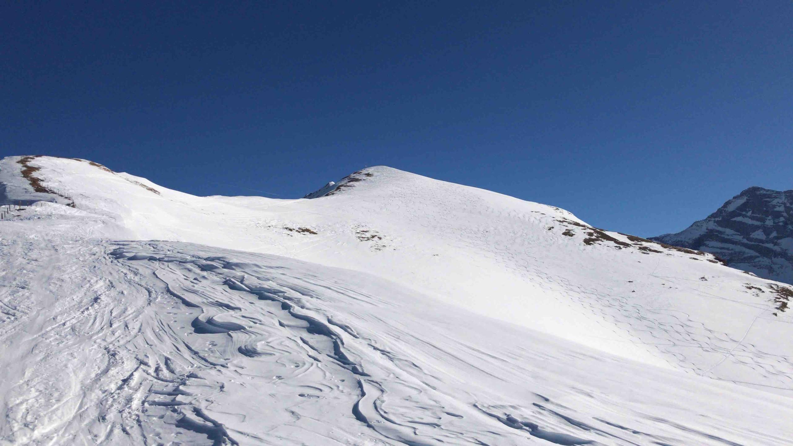Letzter Aufstieg, Skitour Riepenspitze
