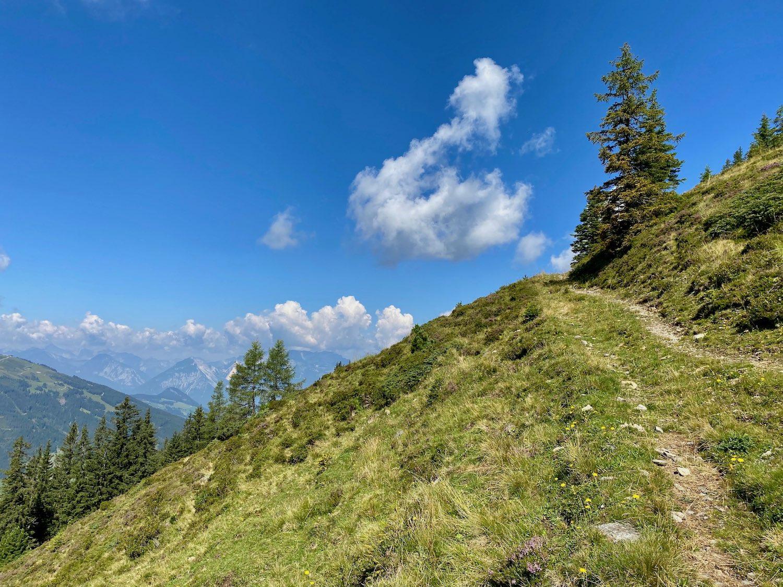 Forstweg Joelspitze Alpbachtal, Tirol