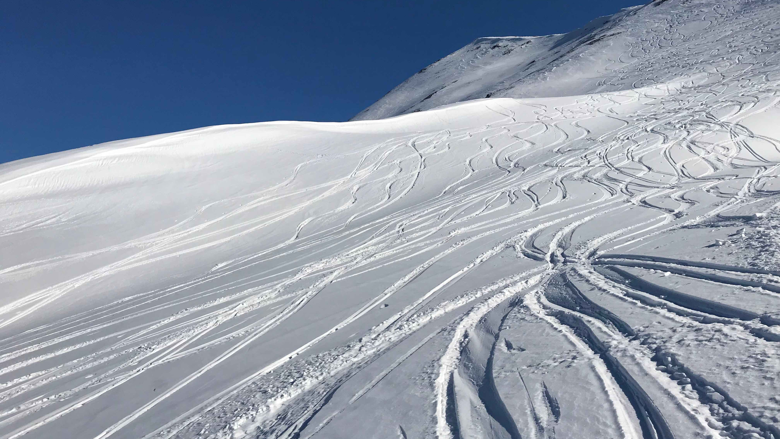 Abfahrtsspuren im Pulverschnee, Skitour Riepenspitze