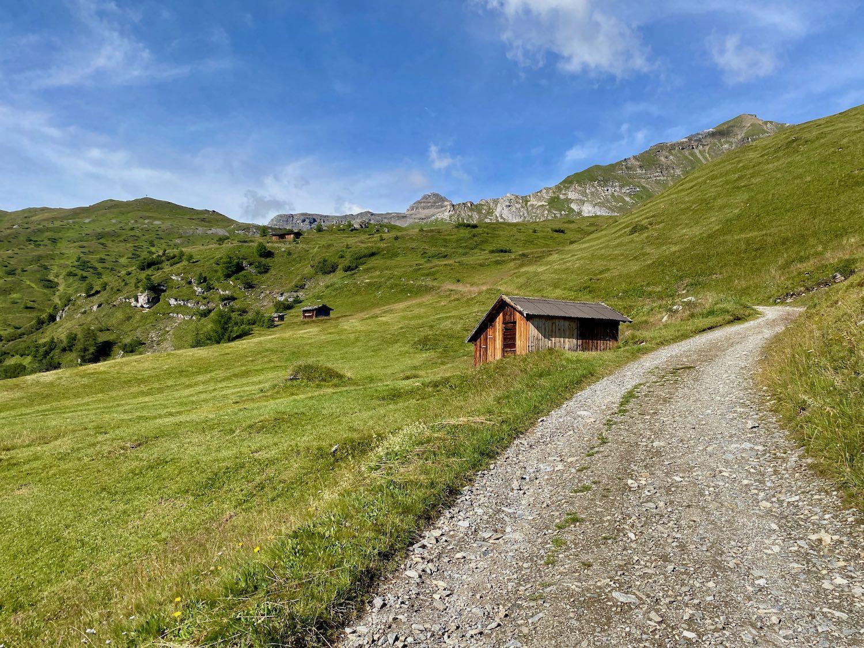 Forstweg zum Padasterjochhaus, Tirol