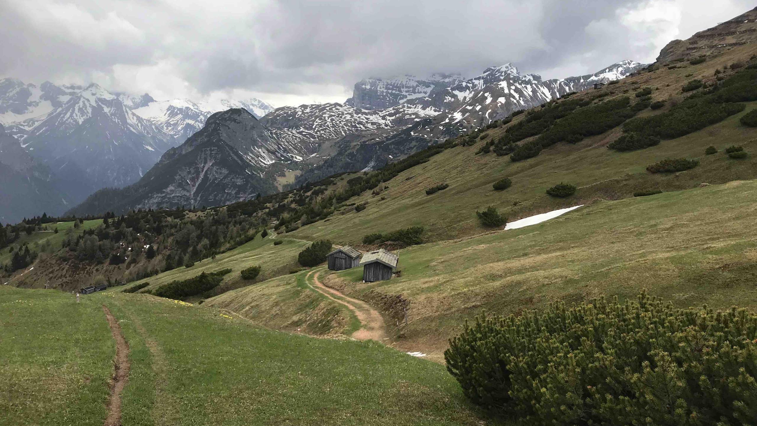 Trail bergab zum Forstweg, Biketour Gschnitztal