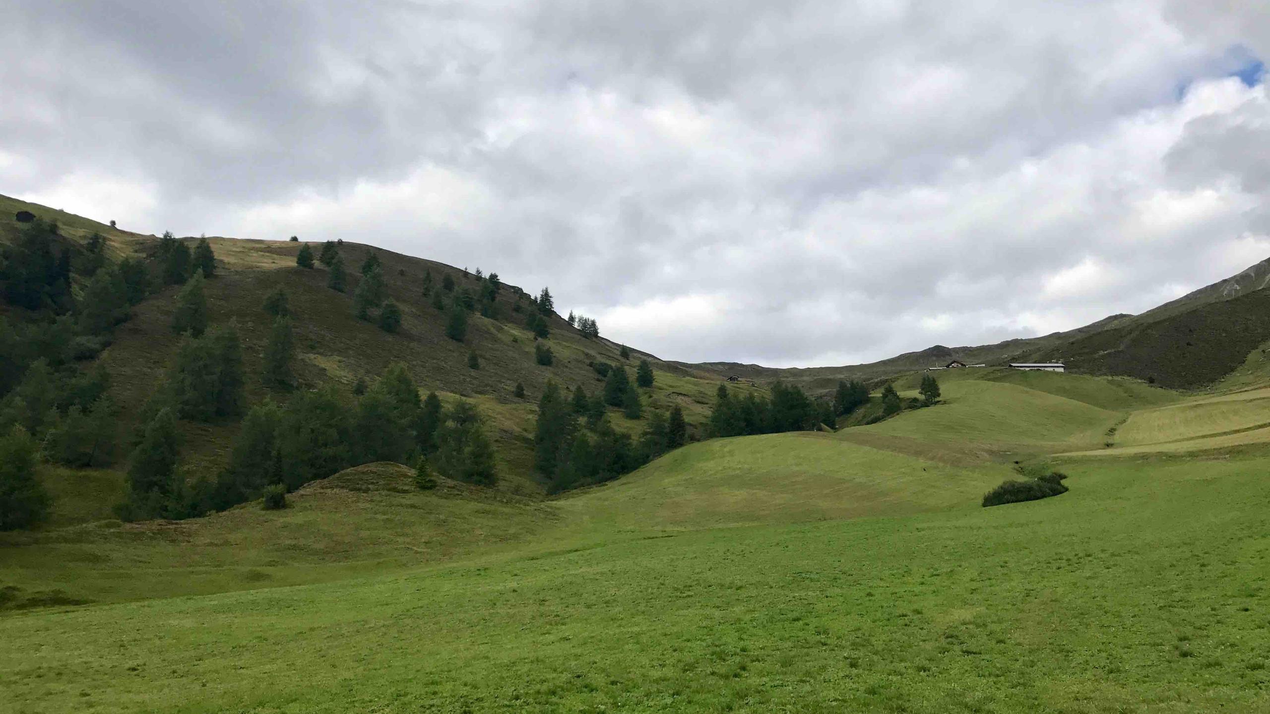 Vorbei an gruenen Wiesen, Biketour Voldertal
