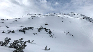 Schneegrubenspitze, Kurzer Grund - 2.237 m