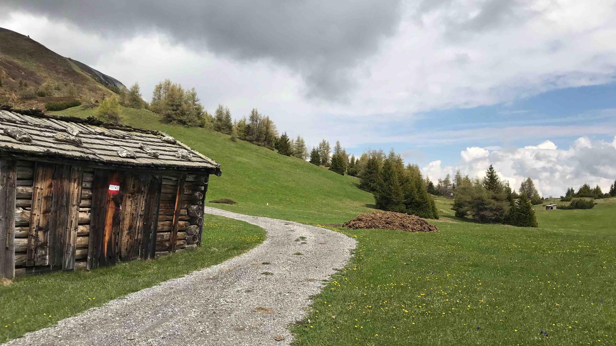 Blumenwiesen am Blaser, Biketour Gschnitztal
