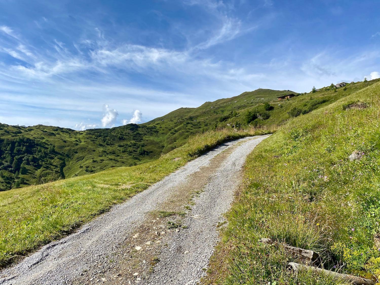 Forstweg zum Padasterjochhaus, Biketour Tirol