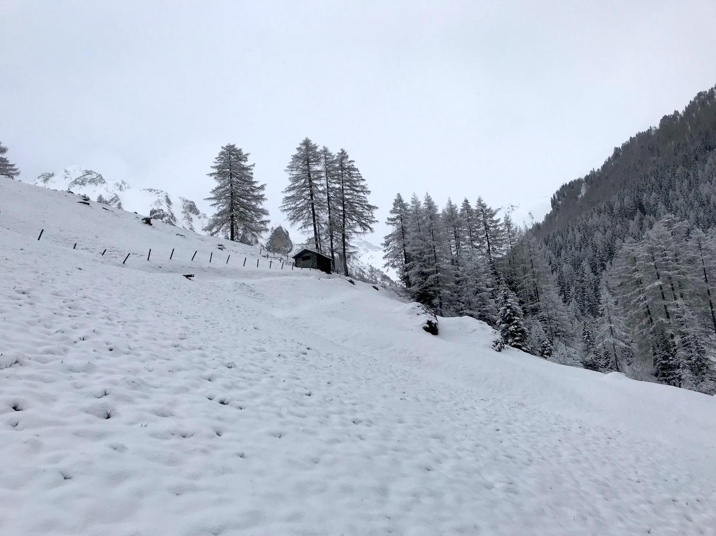 Forsthuette im Schnee, Schoeberspitzen Schmirntal Tirol