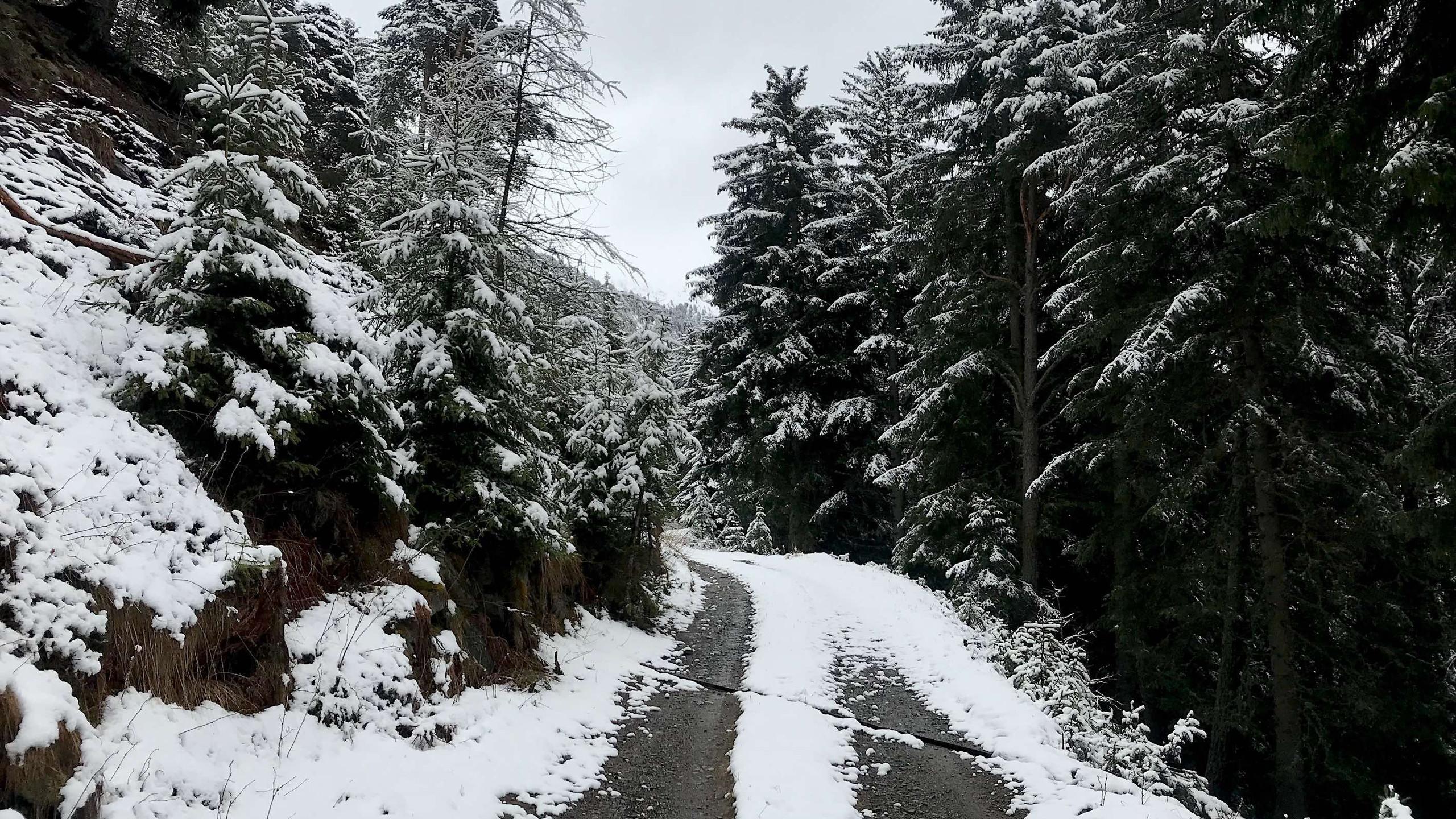 Schneefallgrenze auf 1.700 hm, Biketour Plose