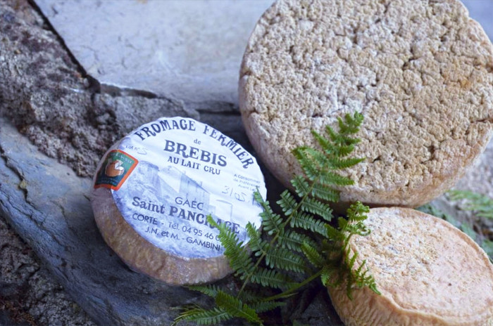 fromage camping saint pancrace corte