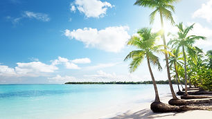 1920x1080_tropical-sand-beach-palms.jpg