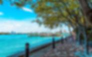 thumb2-miami-beach-west-avenue-florida-s