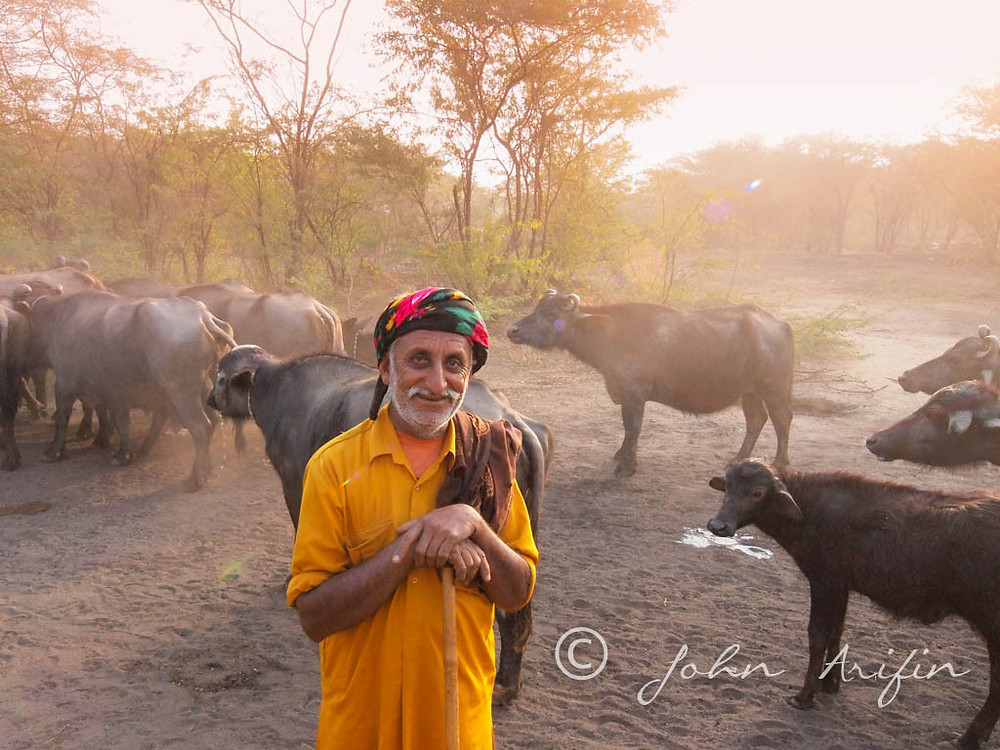 Scene from Kutch, Gujarat ,India.