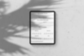 ipad-pro-on-light-background-portrait-sh