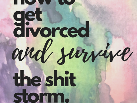 Getting Divorced and Surviving the Sh*t Storm