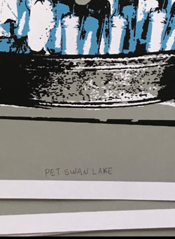 PET SWAN LAKE. detalhes