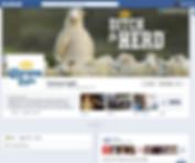 CL Facebook 1.png