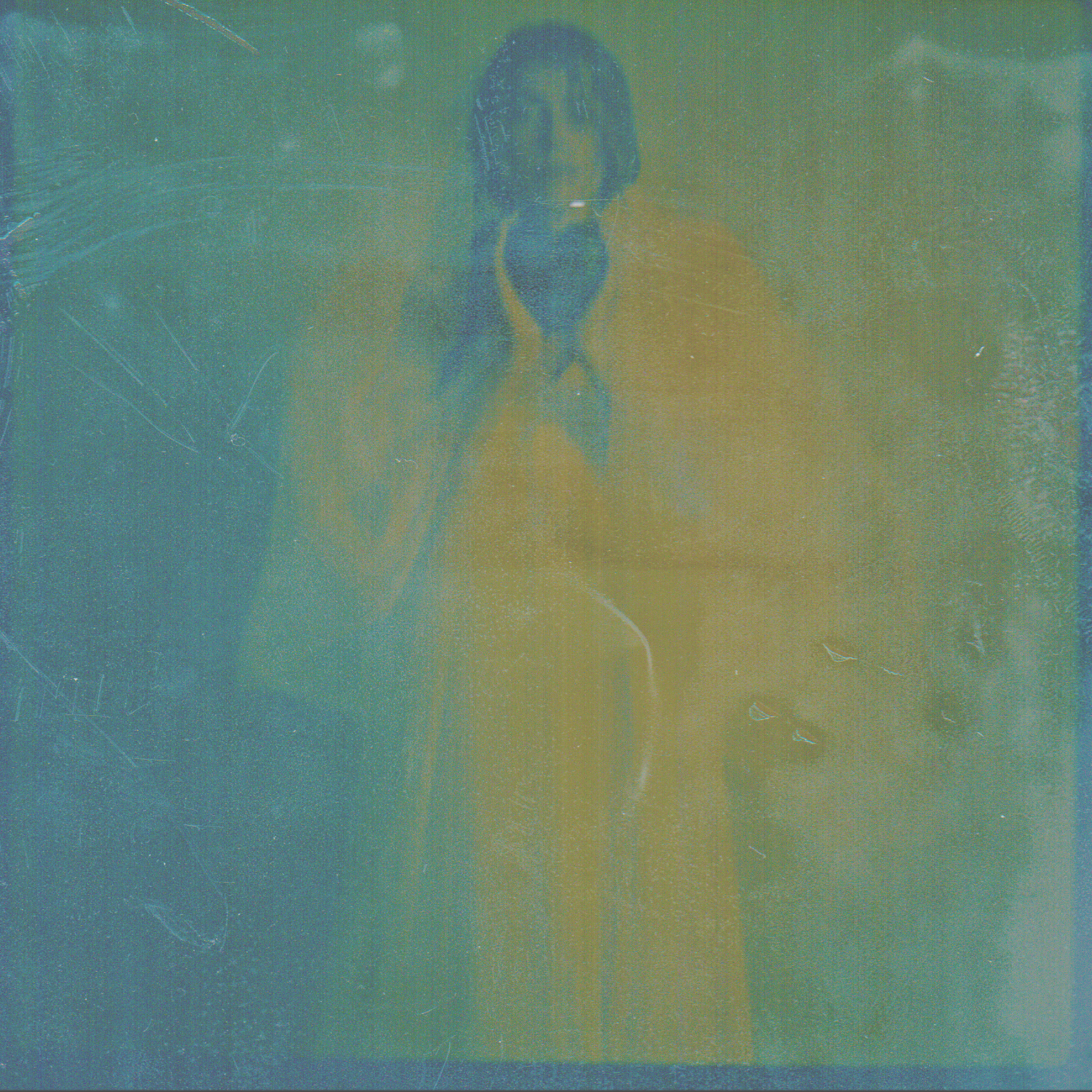 Sofia Bush Negative II