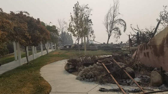 California's firestorm and its financial future